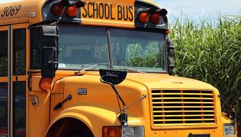 До чого сниться автобус – сонник, їхати, чекати або запізнитися на автобус, тлумачення сну про квиток, водія і розклад автобуса