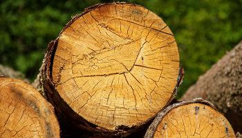 До чого сняться дрова? Тлумачення по сонникам – колоти дрова уві сні